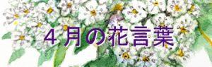 四月花言葉